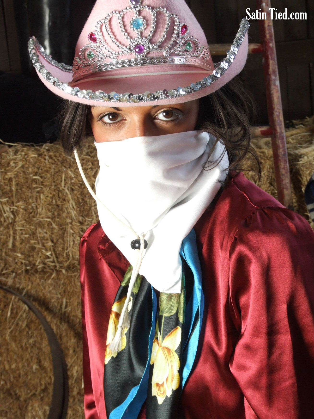 Satin Tied: Masked in Satin